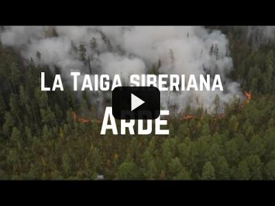 Embedded thumbnail for Video: Arde la taiga siberiana