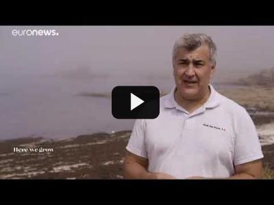 Embedded thumbnail for Video: Viaje al universo de sabores marinos de Galicia