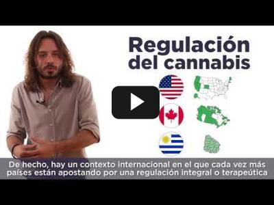 Embedded thumbnail for Video: PODEMOS pide debate para LEGALIZAR la MARIHUANA
