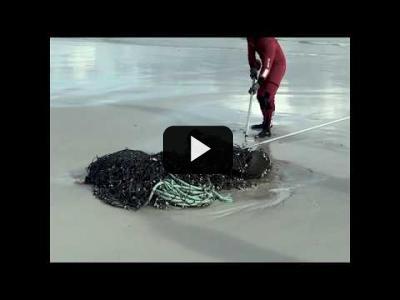 Embedded thumbnail for Video: Las redes de pesca fantasma ahogan la vida marina