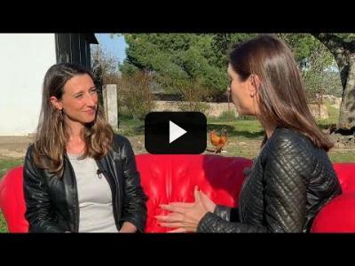 Embedded thumbnail for Video: #EURoad En ruta a las Europeas Día 5: Hablan los españoles
