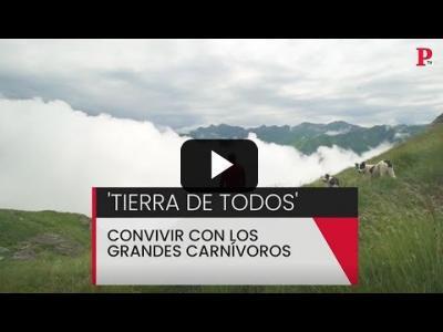 Embedded thumbnail for Video: Tierra de todos: convivir con los grandes carnívoros