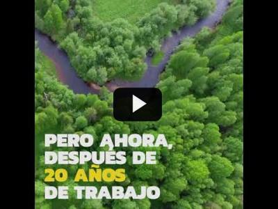 Embedded thumbnail for Video: Una victoria para el bosque de Dvinsky en Rusia
