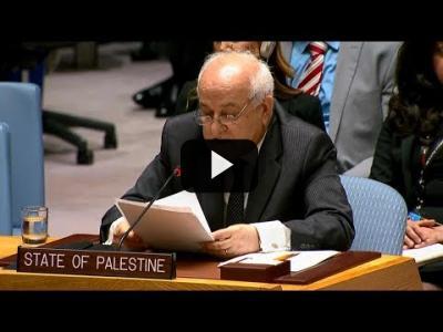 Embedded thumbnail for Video: Palestina denuncia 'crímenes de guerra' israelíes en Gaza
