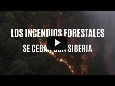 Embedded thumbnail for Video: Los incendios forestales se ceban con Siberia