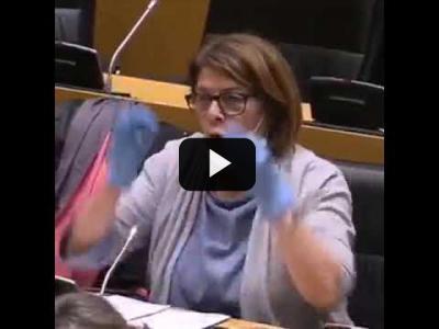 Embedded thumbnail for Video: Inés Sabanés pide en el Congreso un transporte seguro durante la Covid19
