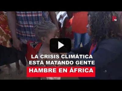 Embedded thumbnail for Video: Hambre en África: la crisis climática está matando gente